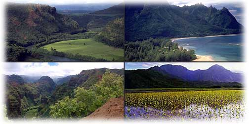 4 images of Kauai landscape