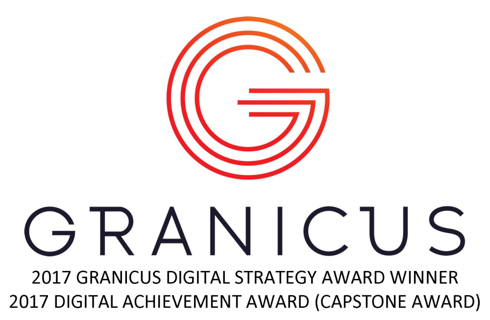 2017 Digital Strategy Award Winner